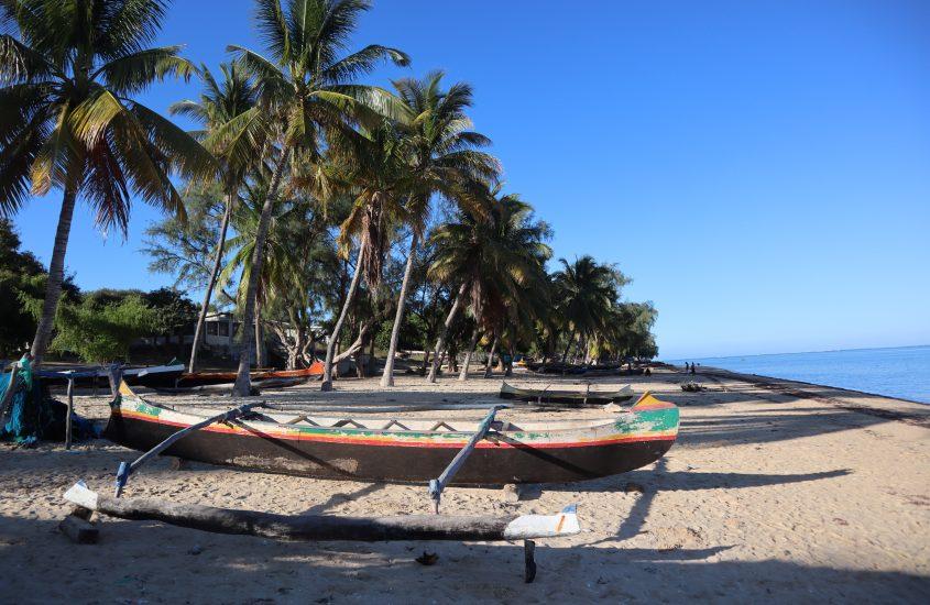 Madagaskar   Ifaty (Snorkelen, Reniala Nature Reserve en Villages des Tortues)