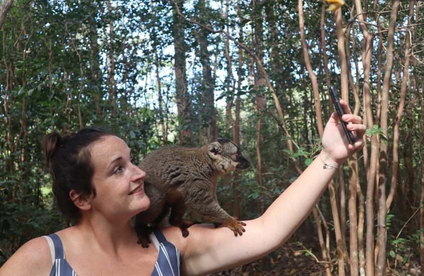 Madagaskar | Andasibe V.O.I.M.M.A community reserve & Vakona private reserve