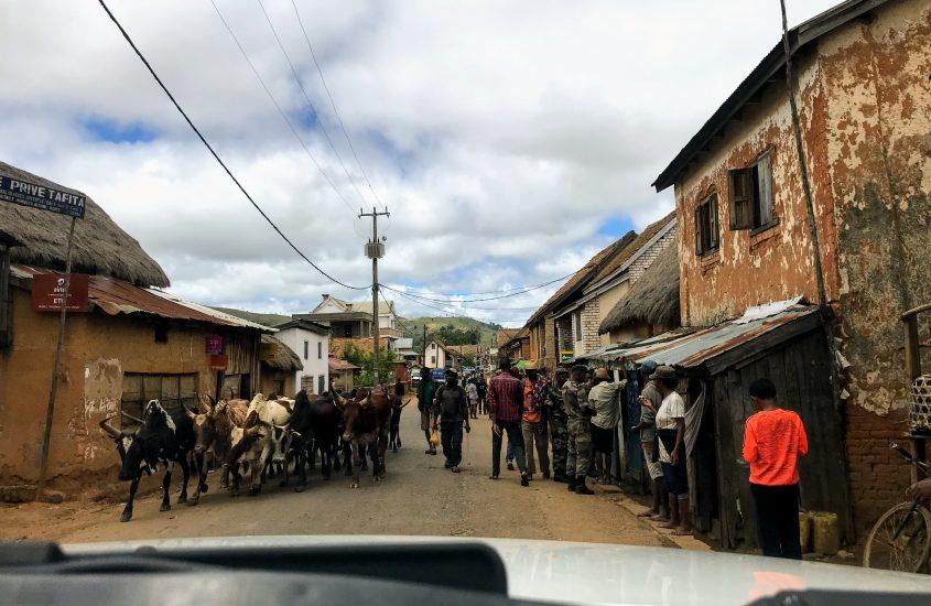 Madagaskar | zelf rijden of met chauffeur? + TIPS!